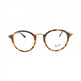 очки для зрения RAY BAN  RB 2447VF 5491
